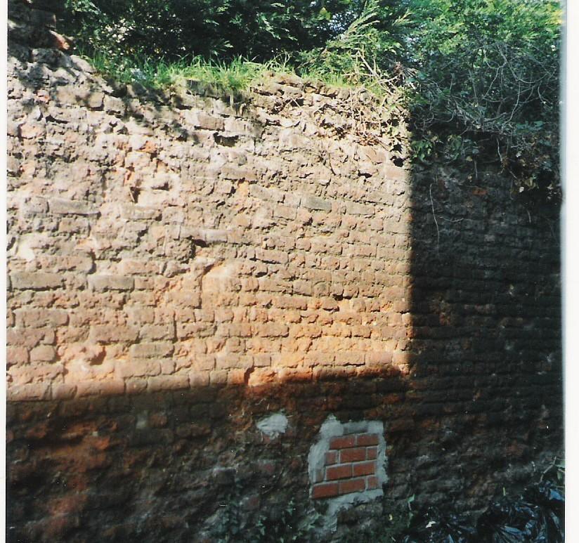 Clifden Road Wall